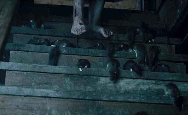 Check Out The Spine-Chilling Trailer Of Stephen King's '1922'